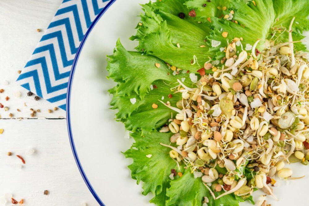 Salade de haricots germés